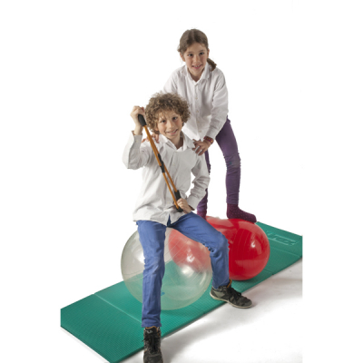 Gymnic Opti Ball