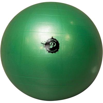 Poull Ball Giant Ball
